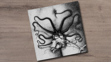 Biche/Organon – Split LP